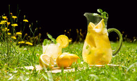 Lemonade in meadow Stock Photography