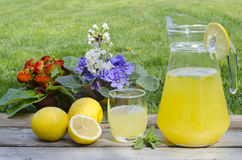 Lemonade with mint and colored flowers. In background Stock Photo