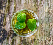 Lemonade with mint on a dark wood Royalty Free Stock Images