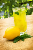 Lemonade with mint and lemon Stock Photos