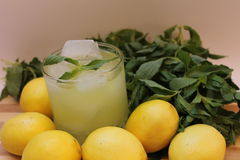 Lemonade with mint and lemons Stock Photos