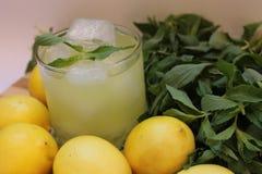 Lemonade with mint and lemons Royalty Free Stock Photo