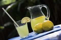 lemonade setting. Lemonade, pitcher and glass outdoors Royalty Free Stock Images
