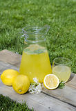 Lemonade and slices of lemon and flowers. On wood and grass Royalty Free Stock Images