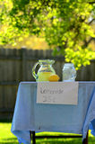 Lemonade stand in the sun. Lemonade stand with trees in background, lemon and pitcher Stock Photos