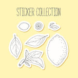 Lemonade sticker collection with hand drawn lemon, leaves and branch Royalty Free Stock Photography