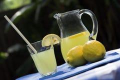 lemonadeinställning royaltyfria bilder