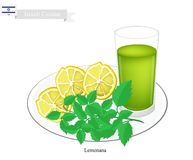 Lemonana or in Israeli Frozen Lemonade with Mint. Israeli Cuisine, Lemonana or Traditional Squeezed Lemonade and Spearmint Leaves. One of The Most Popular Drink Stock Photography