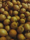 Lemone 免版税库存图片