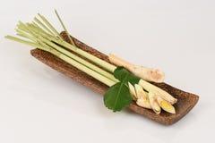 Lemongras, Kaffirlindenblätter und Galangal, verwendet als Suppe (Tom-Jamswurzel) stockfotos