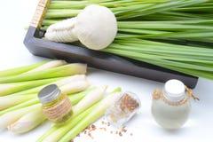 Lemongrass ουσιαστικό πετρέλαιο με Aromatherapy στοκ εικόνες με δικαίωμα ελεύθερης χρήσης