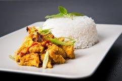 lemongrass πιάτων κοτόπουλου στοκ εικόνες με δικαίωμα ελεύθερης χρήσης