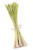 Lemongrass Royalty Free Stock Photography