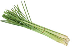 lemongrass Fotografia Stock