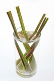 Lemongrass. In the cup on white background Royalty Free Stock Photo