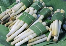 Lemongrass Stock Photo