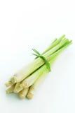 Lemongrass Stock Images