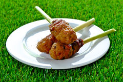 Lemongrass Chicken on white dish. Grilled lemongrass chicken skewers on a white plate is placed on the grass Stock Image