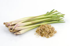 Lemongrass (Cymbopogon citratus (DC.) Stapf). Royalty Free Stock Photo