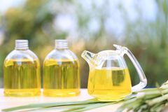 Lemongrass essential oil in glass bottles on natural green background royalty free stock photography