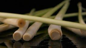 Lemongrass för kocksmaktillsats arkivfilmer
