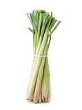 Lemongrass Royalty Free Stock Photo