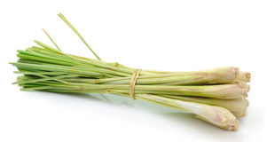Lemongrass isoleted on white background Royalty Free Stock Photo