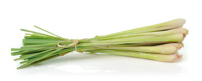 Lemongrass isoleted on white background Stock Photo