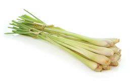 Lemongrass isoleted on white background Royalty Free Stock Photography