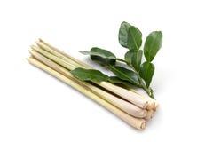 Lemongrass and kaffir lime leaveson white background Stock Photography