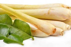 Lemongrass and kaffir lime Stock Photography