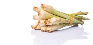 Lemongrass Over White III Royalty Free Stock Photography