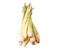 Lemongrass Over White IV Royalty Free Stock Photos