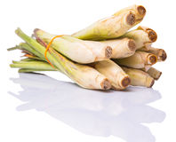 Lemongrass Over White XI Royalty Free Stock Photos