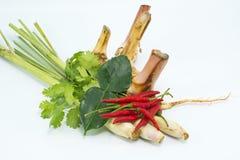 Lemongrass, wapno liście, chili, cytryna, Świezi ziele i pikantność składników azjatykci jedzenie, odizolowywamy na białym tle Fotografia Royalty Free