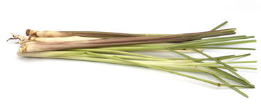 Lemongrass  Royalty Free Stock Image
