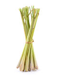 Lemongrass on white background Stock Photography
