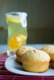 lemoniad muffins Zdjęcie Stock