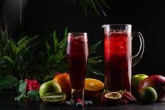 Lemoniady czarna jagoda - czernica w dzbanku, owoc i szk?o i zdjęcia stock