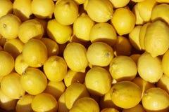 Lemons. Zitronen, frisch auf einem Bio-Markt Royalty Free Stock Images