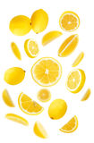 Lemons. Many fresh lemons on white background royalty free stock photography