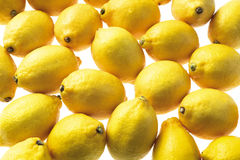 Lemons. Group of bright yellow zesty lemons on display Stock Photography