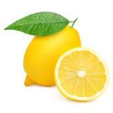 Lemons. Isolated on white background Royalty Free Stock Images