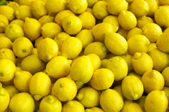 Lemons. Pile of bright yellow Meyers lemons at the farmers market Stock Images