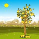 Lemons. Cartoon illustration of a lemon tree over a beautiful autumn background Royalty Free Stock Photography