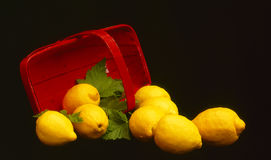 Lemons and Basket Royalty Free Stock Photography