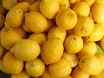 Lemons. A close up of Lemons in a fruit shop royalty free stock photography