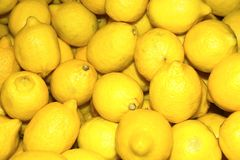 Lemons. Colourful display of bright yellow lemons Stock Image