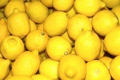 Free Lemons Stock Image - 2704591