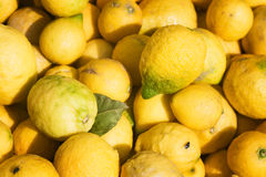 Lemons Stock Images